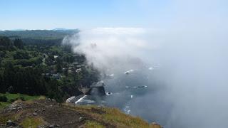 An der Nebelküste
