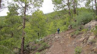 Auf den Roque Faneque